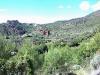 desierto-palmas-castello