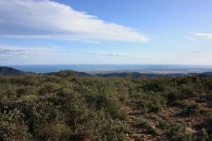 Vistas coberturas Castellón