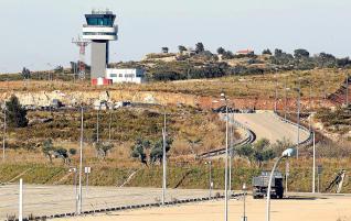 El halconero del aeropuerto de Castellón plantea llevar conejos al coto de Doñana